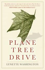 Plane Tree Drive